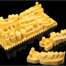 SD400060_print-model_2